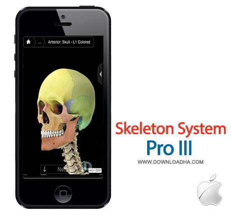 skeleton system pro شناخت ساختار استخوانی بدن انسان با Skeleton System Pro III   آیفون و آیپد
