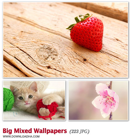 Big Mixed Wallpapers مجموعه 226 والپیپر دیدنی Big Mixed Wallpapers